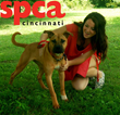 Dianne Michael Insurance Agency Joins SPCA Cincinnati in Charity Drive to Provide Care and Housing for Abused and Neglected Animals