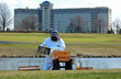 Hilton Chicago/Oak Brook Hills Resort Announces Launch of Honeybee Awareness Campaign