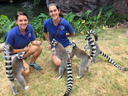 TN Aquarium staff with Ring-tailed Lemurs