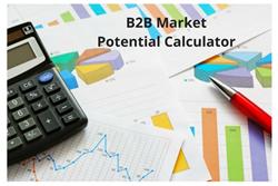 B2B Market Potential Calculator