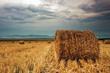 American Farmer Series to Feature Farmweld, Airing on RFD-TV