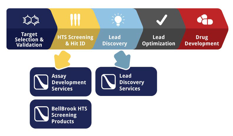 bellbrook labs expands drug discovery services portfolio to include lead discovery services