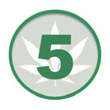Gide Public Affairs Launches Five on Green Website for Cannabis Industry
