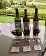 Constantia Winery