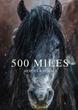 500 Miles Mustang