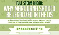 Marijuana legalization int the US