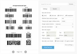 Dynamsoft Barcode Reader 5.0 SDK Web Decode Options