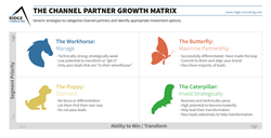 The Channel Partner Growth Matrix from Ridge Consulting