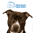 The Kelahan Agency Joins the Friends Of Manchester Animal Shelter for Southern New Hampshire Charity Event to Rescue Neglected Animals