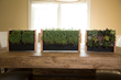Easy-to-Use Vertical Garden EcoQube Frame, for Growing Micro-Veggies Indoors Quickly and Affordably, Crushes Crowdfunding Goal Minutes After Launch
