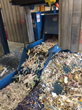 Industry Leading Shredding Service