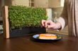 EcoQube Frame Eclipses $100,000 in Funding in less than 48 Hours on Kickstarter – Raising Over 10 Times its Goal for the Best Vertical Veggie Garden