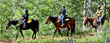 Grand County, Colorado's Dude Ranches Open for the Summer Season, Providing Opportunity to Experience Old West Way of Life