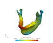 Kitware Prepares to Share Results of Dental Shape Analysis Research