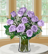 12 Lavender Long-Stem Roses