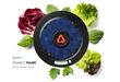 Arable Raises $4.25M Series A to Advance Agriculture with Predictive Farming