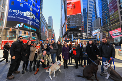 AmsterDog Rescue & PetMed Express(r) celebrate National Puppy Day at the NASDAQ Stock Exchange