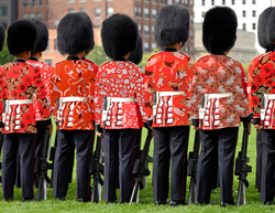 Spoonflower reimagines British Guard uniforms