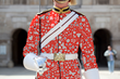 Details of refreshed Queen's Guard uniform