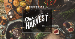 The team that brought you the highly acclaimed Liquid Assets and L.A. on Location in Ocean City, MD, is opening Our Harvest, a new restaurant in Fenwick Island, DE, this Spring