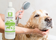 Nootie Natural Dog Shampoo; New Product Combats Pet Itch and Dry Skin