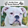 Mainstreet Independent Insurance Agencies Launches Community Involvement Program in Partnership with Ho-Bo Care Boxer Rescue to Provide Rescue for Local Dogs in Need