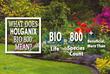 Holganix Bio 800+