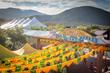 The World Unites: 14th Annual International Folk Art Market | Santa Fe