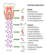 Mesenchymal Stem Cells (MSCs) from Teeth