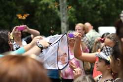 Donor remembrance ceremony butterfly release
