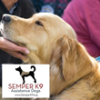 The Mautz Agency Initiates Community Involvement Program by Launching Inaugural Campaign in Collaboration with Semper K9 Assistance Dogs