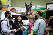 Global Pet Expo 2017 Expands Exhibit Space and Boasts a Sold Out, Record-Setting Show
