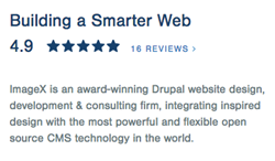 4.9/5 Star Rating on Clutch for Top Drupal Development Agency
