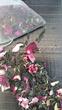 Lady Gatsby, Rose, Cinnamon, Manuka, Green Tea by Zealong from The Kiwi Importer