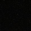 Midnight Majesty™
