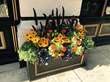 WOW Windowboxes, Cincinnati, Outdoor Decor, Flower and gardening