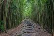 Skyline Eco-Adventures Awarded Haleakalā National Park Service Concession Contract