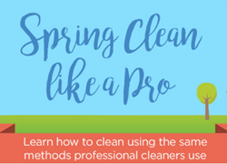Spring Clean Like a Pro - Microfiber Wholesale Infographic
