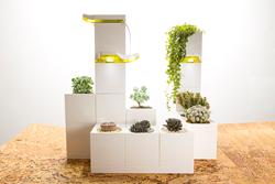LeGrow Smart Garden Live On Kickstarter