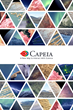 Launching Capeia - A New Way to Interact with Science