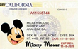 Mr Mouse Driving License.JPG