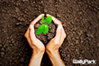 """WallyPark Declares April """"Earth Month"""" to Plant Trees"""