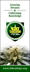 California Cannabis Institute