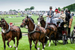 "Winterthur's 39th Annual Point-to-Point Will Debut George A. ""Frolic"" Weymouth Carriage Parade May 7 With Special Guests"