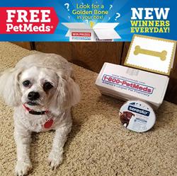 Jassie, previous winner of 1-800-PetMeds Golden Bone Pet Meds Giveaway