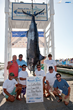 Historic Tournament on Tap: Emerald Coast Blue Marlin Classic at Sandestin Set to Shatter Records