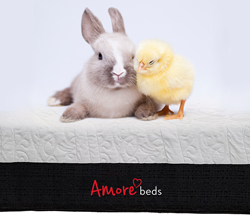 Bunny & Chick On Amore Beds Mattress