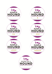 Purple Hound launches accessibility star ratings initiative