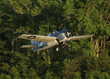 FM-2 Wildcat taking to the air.