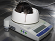 Kiwi Bird Protection Program Uses New METTLER TOLEDO Scales to Ensure Birds' Survival